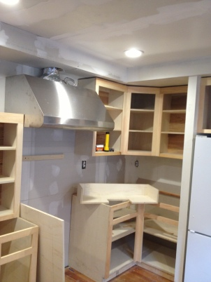 Kitchen During Remodel
